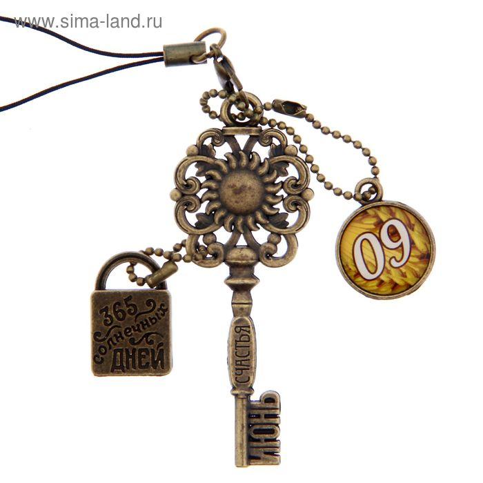 """Ключ сувенирный """"9 Июня"""", серия 365 дней"""