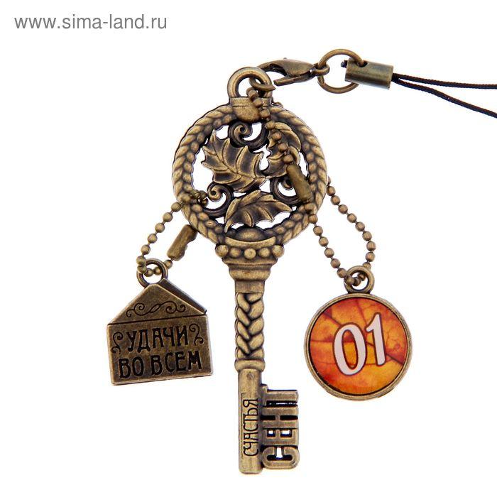 """Ключ сувенирный """"1 Сентября"""", серия 365 дней"""