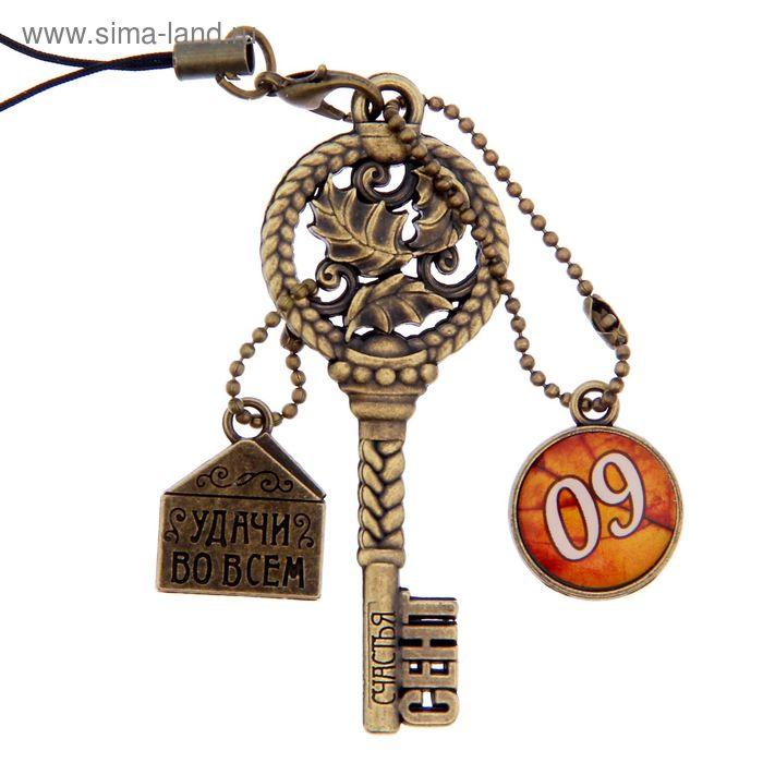 """Ключ сувенирный """"9 Сентября"""", серия 365 дней"""