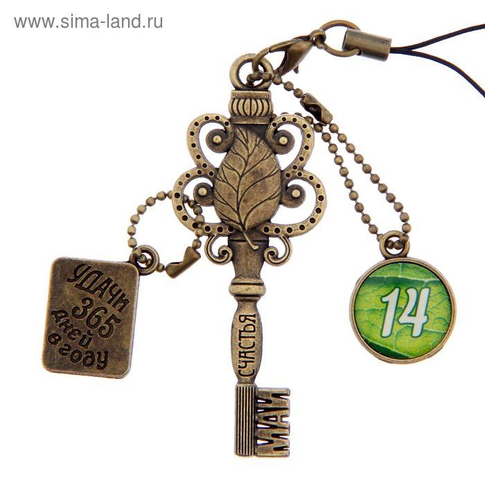 """Ключ сувенирный """"14 Мая"""", серия 365 дней"""