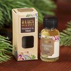 Raaga fragrance oil cedar 10 ml