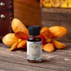 Raaga fragrance oil, ginger, 10 ml