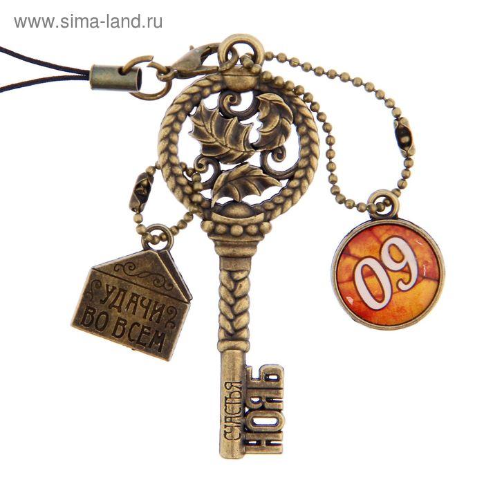 """Ключ сувенирный """"9 Ноября"""", серия 365 дней"""