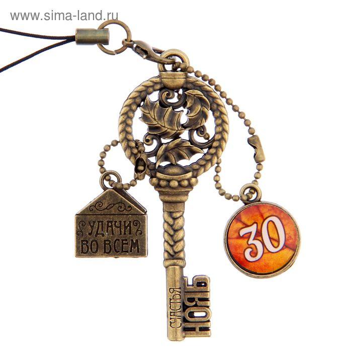 """Ключ сувенирный """"30 Ноября"""", серия 365 дней"""