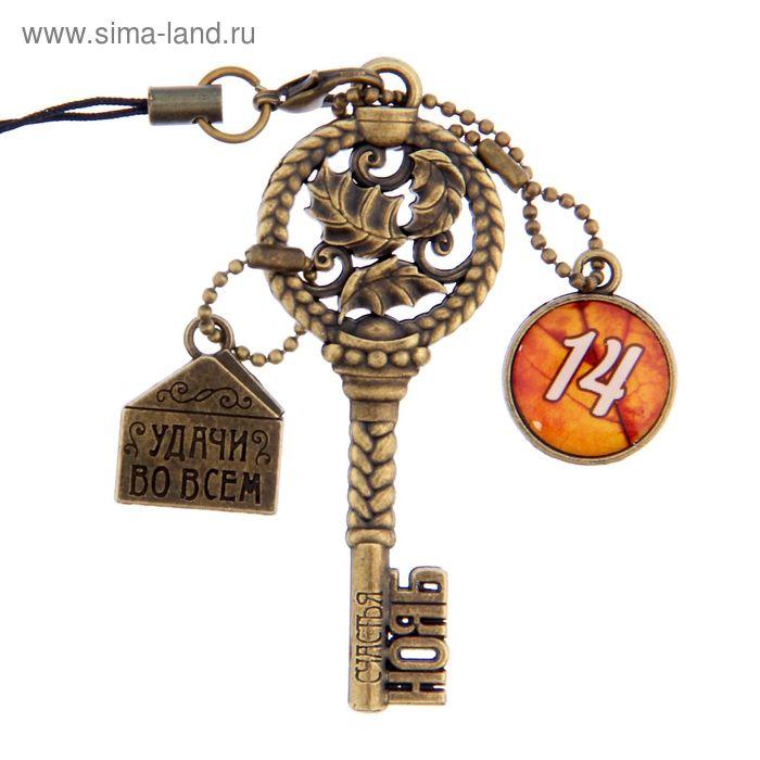 """Ключ сувенирный """"14 Ноября"""", серия 365 дней"""