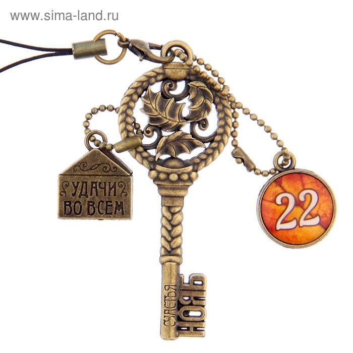 """Ключ сувенирный """"22 Ноября"""", серия 365 дней"""
