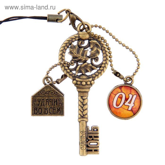 """Ключ сувенирный """"4 Ноября"""", серия 365 дней"""