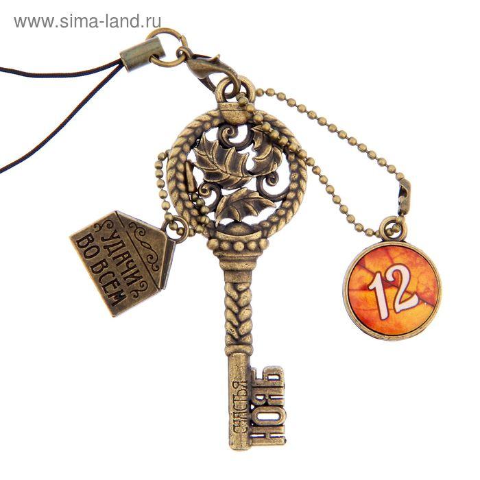 """Ключ сувенирный """"12 Ноября"""", серия 365 дней"""