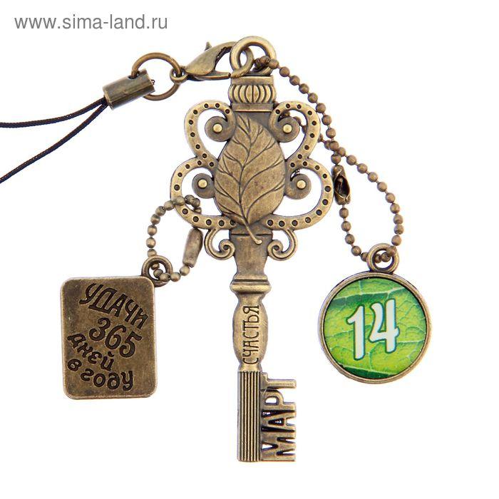 """Ключ сувенирный """"14 Марта"""", серия 365 дней"""