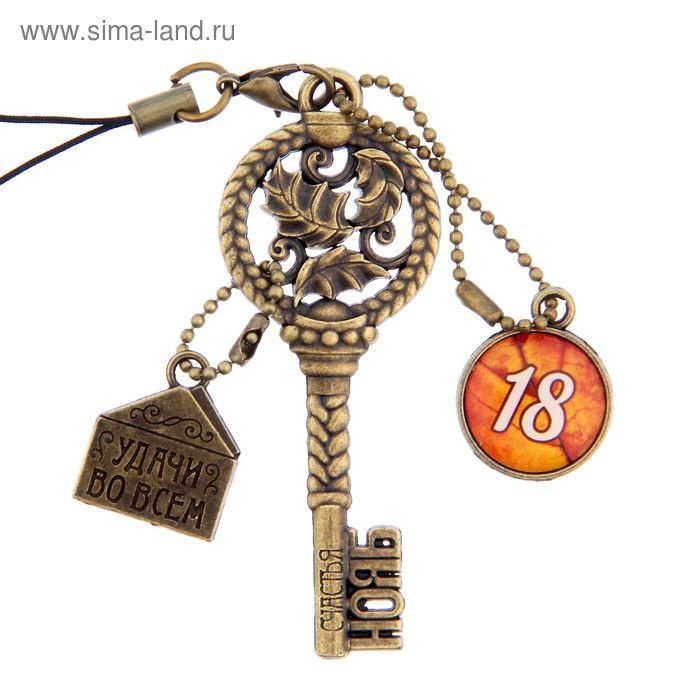 """Ключ сувенирный """"18 Ноября"""", серия 365 дней"""