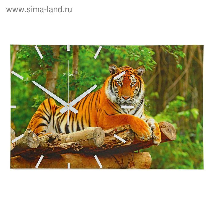 "Часы настенные прямоугольные ""Тигр"", 61х37 см"