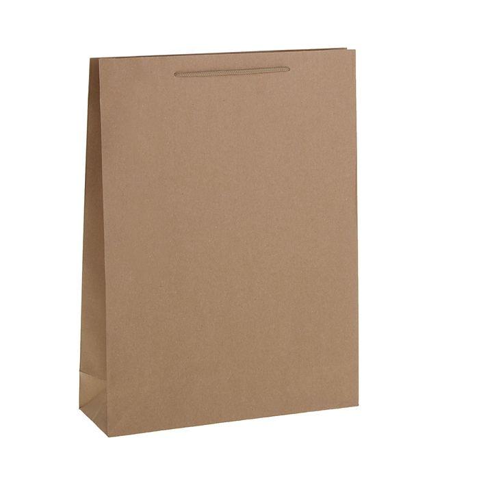 Пакет крафт без печати, 38 х 50 х 12 см
