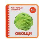 """Мой первый словарик """"Овощи"""" (EVA). Автор: Краснушкина Е.Е."""