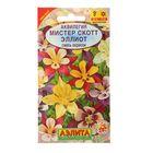 """Семена цветов Аквилегия """"Мистер Скотт Эллиот"""", смесь окрасок, Мн, 0,2 г"""