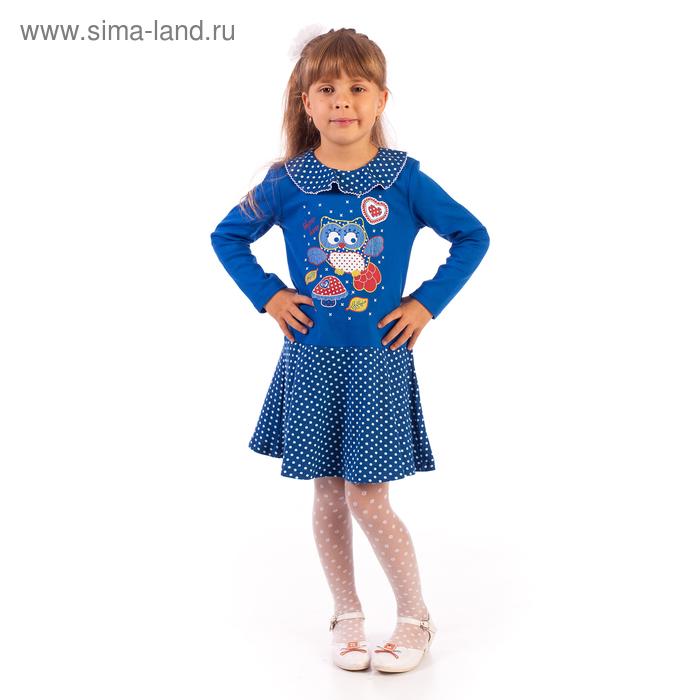 """Платье """"Совушка"""", рост 104 см (54), цвет василек/горошек ДПД425067н"""