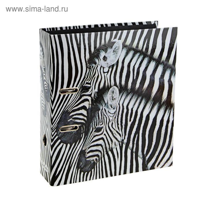 Папка-регистратор 80мм Herlitz Zebras, maX.file Black&White, ламинированный картон