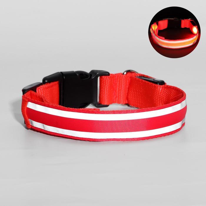 Ошейник с подсветкой и 2 светоотражающими полосами, размер М, 3 режима свечения, красный