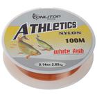 Леска White fish, d=0,14 мм, 100 м