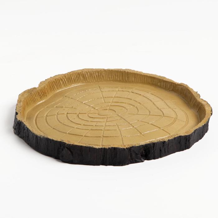 Поилка для террариума под дерево, 16,5 х 15,5 х 1,5 см