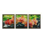 """Модульная картина в раме """"Розовая орхидея"""", 3 шт. — 33×38 см, 38×99 см"""