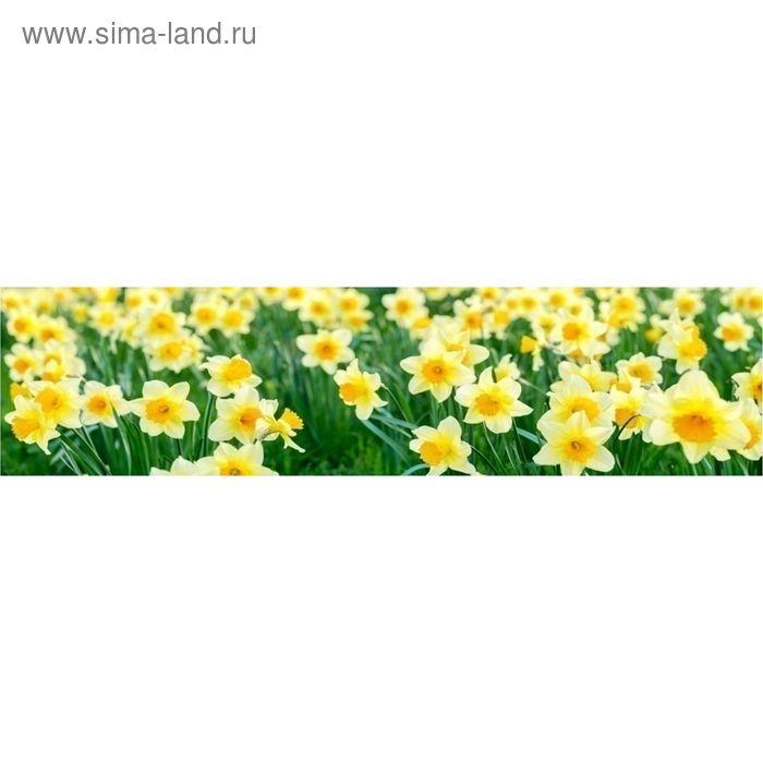 "Кухонный фартук ""Нарциссы 2"" 2440х600х3 мм"