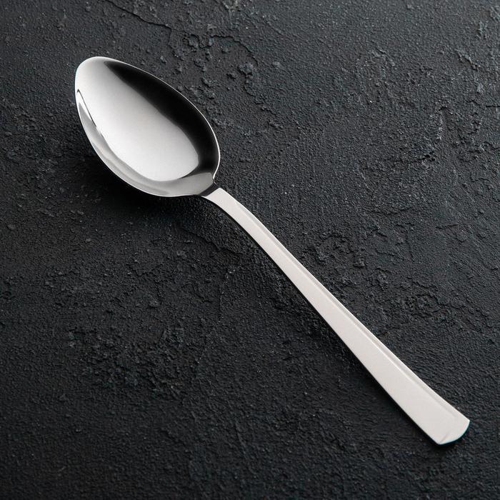Ложка столовая «Модерн», h=20 см, толщина 1,8 мм