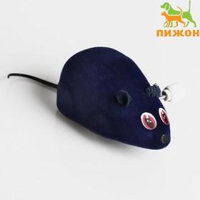 Мышь заводная, 7 см, синяя