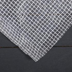 Плёнка полиэтиленовая, армированная, толщина 120 мкм, 2 × 22 м, белая, Эконом 15%