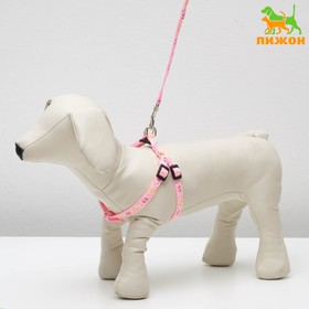 "Set ""Colour of foot"", width: 1 cm, leash 120cm, harness 20-30 cm, pink"