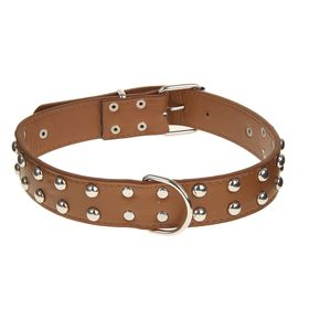 Dog collar studded in 2 rows, 70 x 3.4 cm, brown