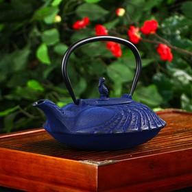 {{photo.Alt || photo.Description || 'Чайник «Южная птица», 800 мл, с ситом, цвет синий'}}