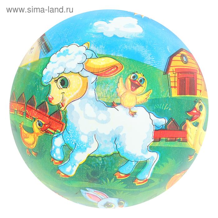 """Мяч детский """"Домашние животные"""" 22 см"""