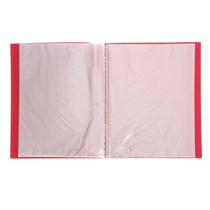 Папка «Портфолио ученика начальных классов», 20 прозрачных вкладышей А4, корешок 14 мм - фото 405920501