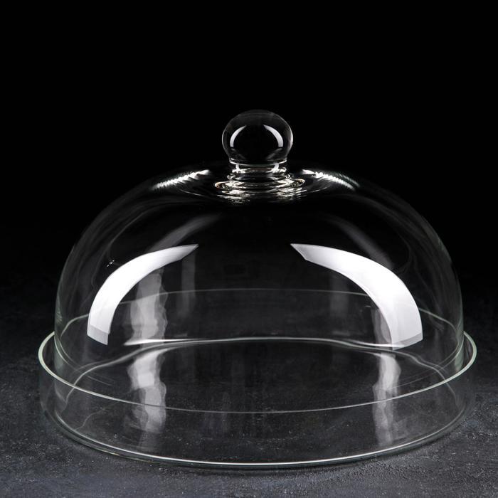 Поднос-тортовница, с крышкой, d=30 см - фото 489896