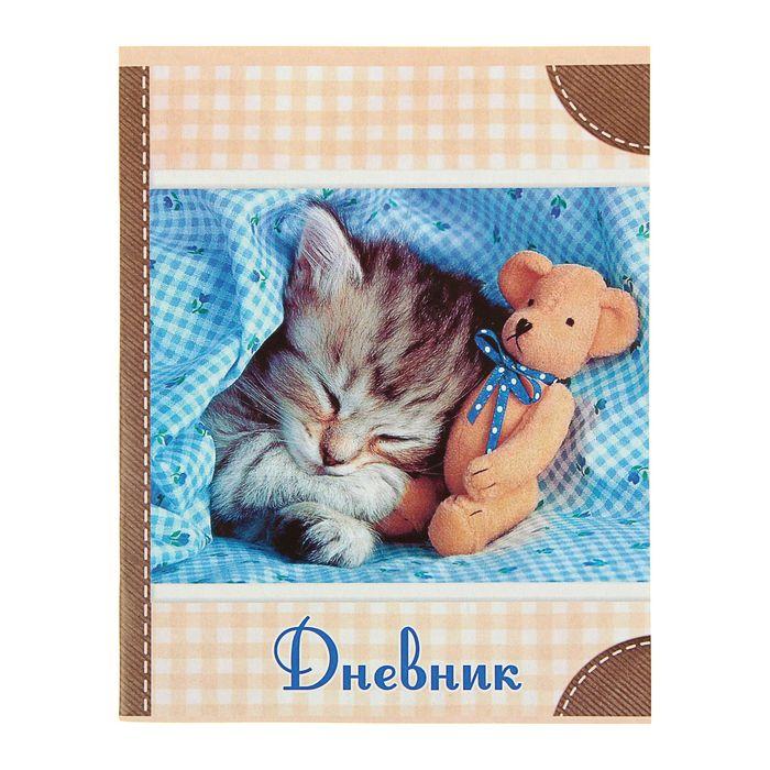 """Дневник универсальный 1-11 класс """"Котёнок"""", мягкая обложка"""