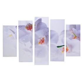 """Модульная картина на подрамнике """"Белые орхидеи"""", 2 — 53×16, 2 — 70×24, 1 — 80×3, 120×80 см"""