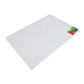 Холст на подрамнике, лён 100%, 60 х 80 х 2 см, акриловый грунт, мелкозернистый, 180 г/м²