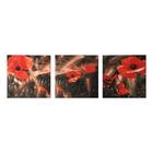 """Модульная картина на подрамнике """"Маки в поле"""", 3 шт. — 28×28 см, 28×84 см"""