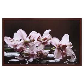 "Картина ""Цветы на камнях"" 67х107 см рамка микс"