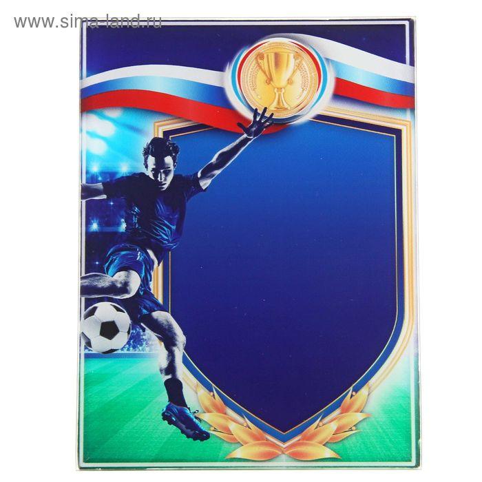 "Награда спортивная ""Футбол"""
