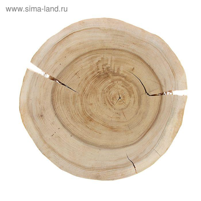 Спил вяза шлифованный (d 30-35 см)