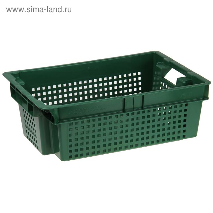 Ящик п/э 60х40х20 см, сплошное дно и перфорированные стенки, цвет зеленый