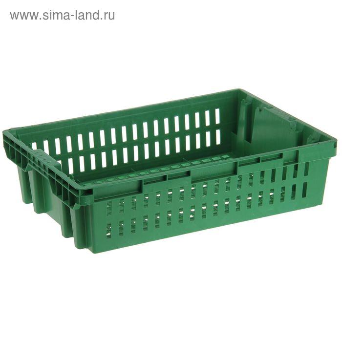 "Ящик п/э 60х40х15,25 см ""Хлебный"", цвет зеленый"