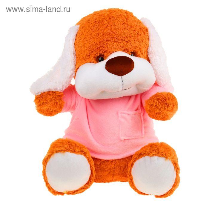 Мягкая игрушка «Собака в кофте», цвета МИКС