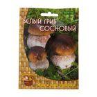 Мицелий на компосте Белый гриб сосновый, 60 мл