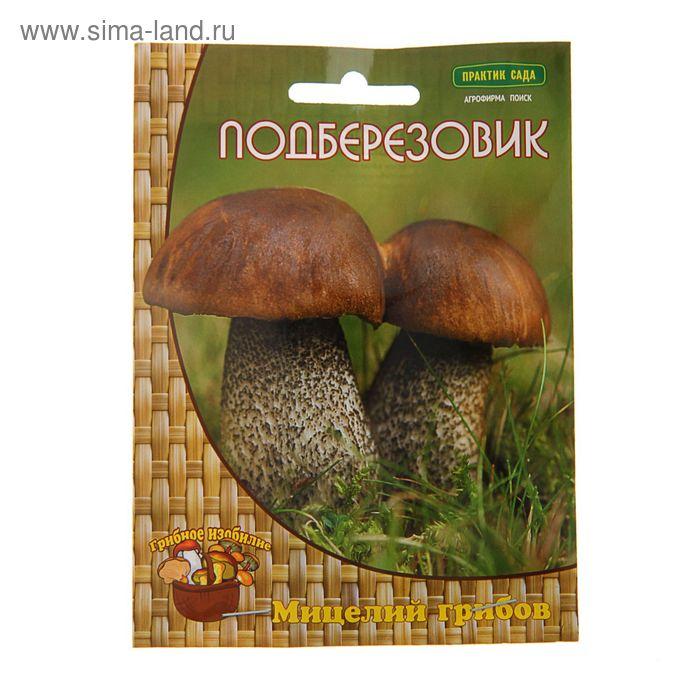 Мицелий на компосте Подберёзовик, 60 мл