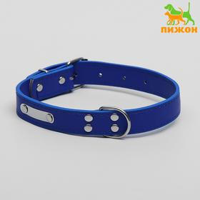 Collar faux leather under the nameplate engraving, 53 x 2.5 cm, blue