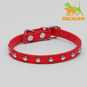 Riveted dog collar made of artificial leather, 30.5 x 1 cm, mix colors