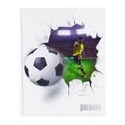 """Дневник для 5-11 класс """"Футбольный мяч"""", твердая обложка, глянцевая ламинация, 48л"""