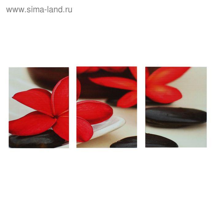 """Модульная картина на холсте с подрамником """"Красная плюмерия"""""""
